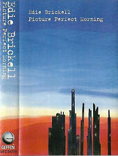 Edie Brickell ‎Picture Perfect Morning CASSETTE ALBUM Rock Folk Rock Acoustic