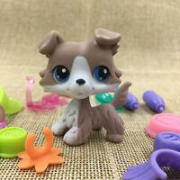Hasbro Littlest Pet Shop #67 LPS Figure Accessories Cream Collie Dog Gift Doll