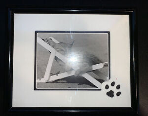 Kitty Cat Sleeping on a Beach Chair Framed in Matted Frame 11x9  B&W