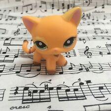 LPS #1643 flower eyes orange cat Lovely Gift Action Figure LITTLEST PET SHOP