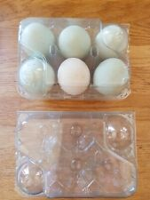 50 Large Chicken/Duck Egg Boxes - perfect for colourful eggs!