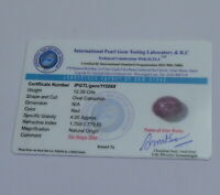 Certified Natural Unheated Myanmar Burma 6 Rays Red Ruby Star 12.39 Ct.Loose Gem