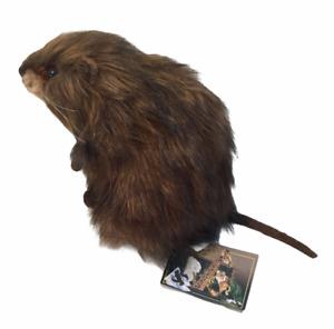 "NEW Plush Stuffed Animal Realistic Hansa Creation MURIDAE RAT MUSKRAT 7"" TALL"