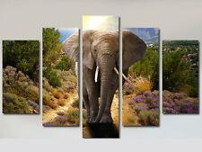 MAJESTIC ELEPHANT LARGE CANVAS PRINTS SET OF 5 (ON FRAME) WALL ART