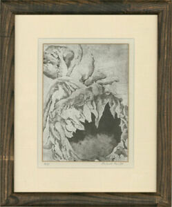 Juliet Keyte - Contemporary Etching, Small Sunflower Seed Head