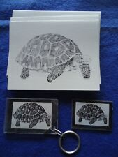Turtle 3 Piece Set-Keychain - 6 Blank Notecards and Magnet New
