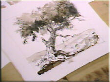 Landscape Drawing Painting DVD Video Vilppu GV3940d New