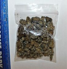*WPF* Educational Collection of Hastings bone bed Micro Fossils