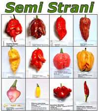 120 Seeds CHILI PEPPERs Coll SUPER HOT: REAPER, RED n BROWN BHUTLAH, JAY PEACH