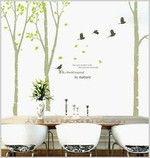 Giant Bird Tree Home Removable Vinyl Wall Sticker Decal Decor Quality Au DIT