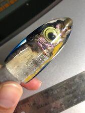 Vintage Real Fish Head 7 Hawaiian Big game fishing lure Tuna Marlin yee Mahi