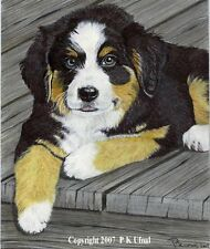 Dog Art,Pencil,Paint,Ink,Bernese Mountain Print PKUfnal