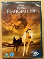 The Young Black Stallion DVD 2003 Walt Disney Live Action Horse Equestrian Drama