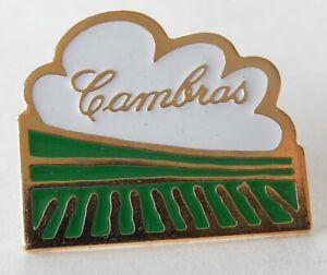 Ancien PIN'S : Vin CAMBRAS - Modèle VIGNE