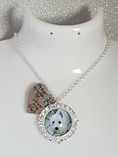 Personalised Pet Dog Cat Photo Pendant Necklace Gift pet  loss Memorial keepsake