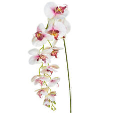 Orchid Phalaenopsis Artificial Silk Trailing 130cm White Pink