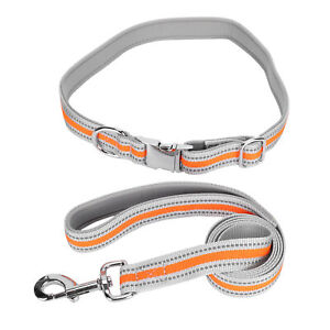 Reflective Dog Pet Collars Leash Anti‑Lost Pet Night Walking Traction Rope HOT