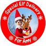 PERSONALISED GLOSS ELF STICKERS FOR PARTIES GIFTS XMAS CARDS