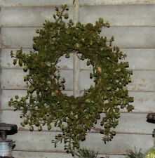 """Primitive 8"""" Green Pepper Baby Grass Artificial Foliage Wreath Floral Ring AS IS"""