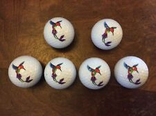 Nicks Underground Novelty Golf Balls - Hummingbird 6 Pack Display Tube New!