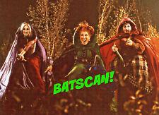 HOCUS POCUS 1993 5x7 Color Photo From Original Film!  Bette, Sarah, Kathy!  #11+