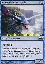 4x Meeresküstensceada (Seacoast Drake) Magic 2014 M14 Magic