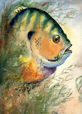 Giant Best Bluegill 8X10 Watercolor Picture Lake Decor art print by Barry Singer