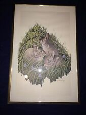 C. E. Phelps Wildlife Print Signed and Number By the Artist 3 Rabbits 1294/2000