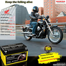 230cca YTZ10S AGM Battery Honda Cruiser Shadow VT400 VLX 400 Steed VT600 NT650V