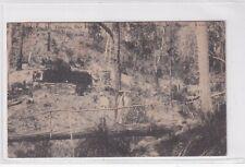 VINTAGE POSTCARD FOOTBRIDGE Mt VICTORIA Mt MORGAN SERIES QLD  1900s