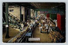 New Orleans LA, Port Dockworkers Unloading Bananas, Linen Louisiana Postcard