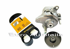 Cuneo NERVATURE CINGHIA + TENDICATENA + Cinghia Tenditore MERCEDES w203 s202 s203 cl203