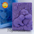 Soap Mold Pandas Soap Mold Silicone Molds Mold for Soap Mold Free Shipping