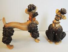 Paire d'Anciennes Caniches Royales en Plâtre