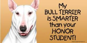 My Bull Terrier Smarter Than Your Honor Student Magnet 4x8 refrigerator car dog