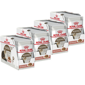 Royal Canin Senior Ageing 12+ in Jelly Wet Cat Food 12x85g (PACK OF 4)