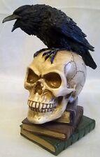 Alchemy GOTHIC Poe's Raven-macabro Calavera Y Pájaro Figura Modelo Edgar Allen Poe