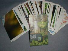 168 Sticker WWF Unser Wald Mit 180 Stickern die Natur entdecken Edeka Sammelbild
