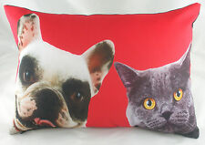 Best Buddies gato y perro Cojín Evans Lichfield Rojo DP123 45.7cm x 33cm