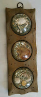 Vintage Crab Lucite Cedar Driftwood Wall Hanging by Fiddler on the Beach, Inc.