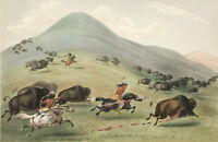 Large George Catlin Indians Hunting Buffalo Painting Fine Art Real Canvas Print