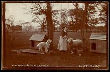 Faversham photo. A Happy Family by W.Hargrave, Faversham. From Ted & Anna. Dogs.