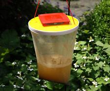 RedTop® Fliegenfalle Fliegenschutz Insektenabwehr Falle Kieferle #099.002