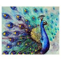 5D Diamond Embroidery Peacock Painting Cross Stitch DIY Craft Home Decor L&6
