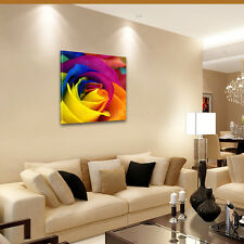 Framed Ready To Hang Canvas Prints Wall Art Painting US STOCK-Colorful Rose HD