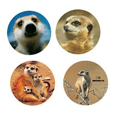 Meerkat Magnets-A:   4 Cool Meerkats for your Fridge or Collection-A Great Gift