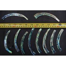 Curved Abalone Purfle Radius RAW BLANK (100 Grams/ Unit)