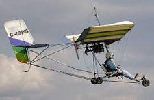 Eipper Quicksilver Hang Gliding Ultralight Aircraft Mahogany Wood Model Big New