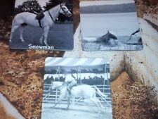 Set of 3 Sm MAGNETS SNOWMAN Champion Show Jumping Gelding Harry De Leyer 1950's