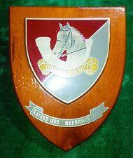 GREYS SCOUTS - RHODESIAN ARMY - SELOUS SCOUTS 1970'S AFRICAN BUSH WAR ORIGINAL